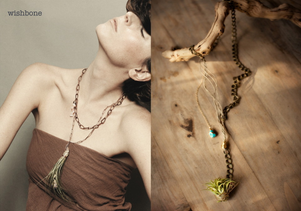 Viola_living_jewels _1