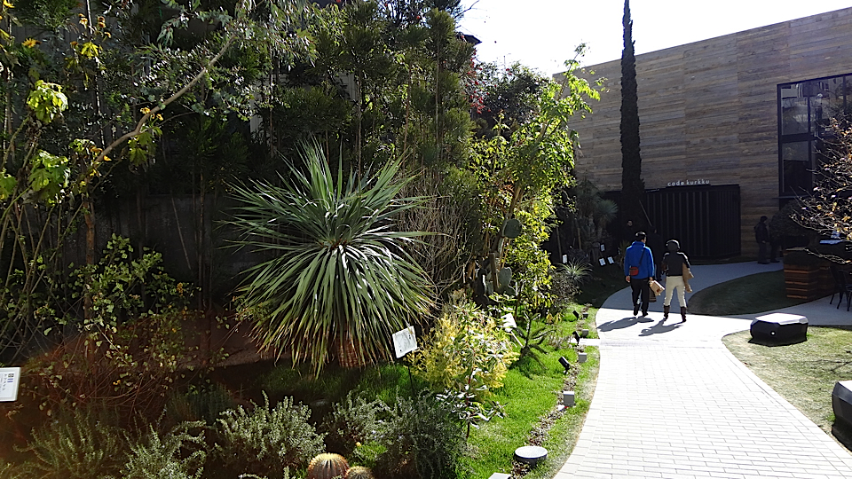 yoyogi_garden