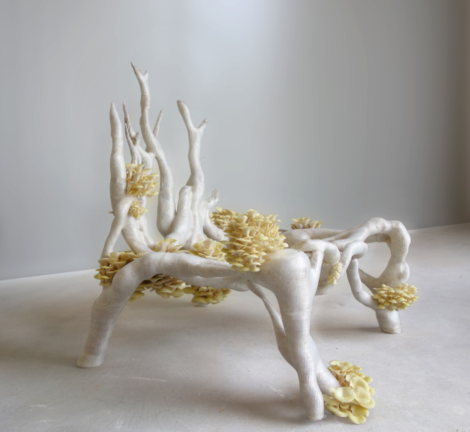 Mycelium chair by Studio Eric Klarenbeek