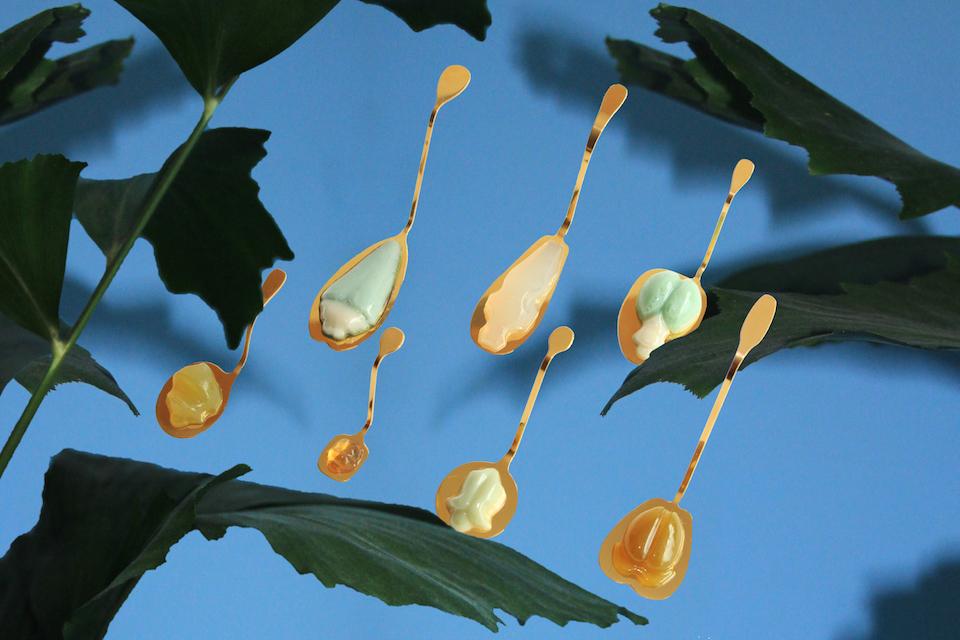 Matilde Boelhouwer  Insectology sweets