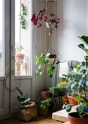 © Lina Skukauske | Urban Jungle Bloggers